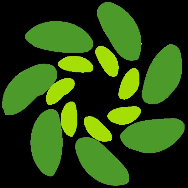 AVDM logo NY 3
