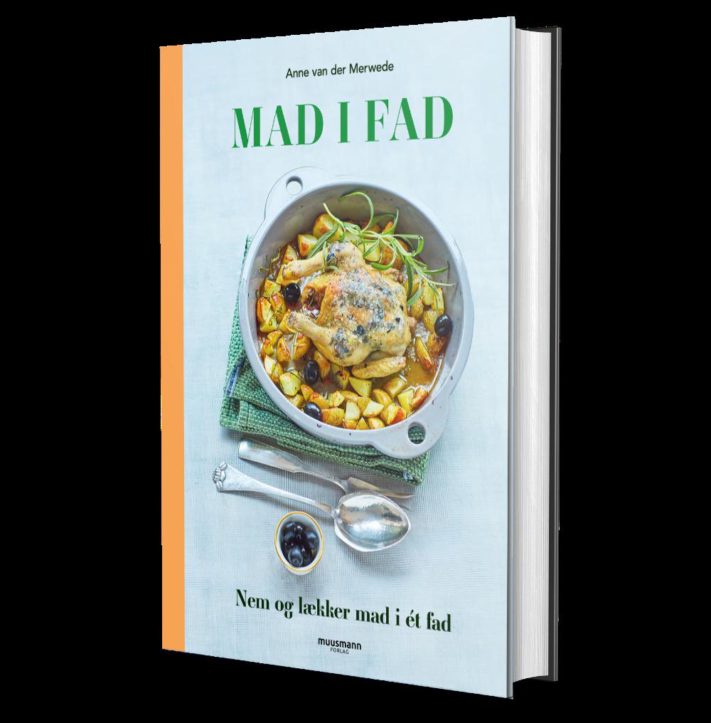 Mad-I-Fad-Bog-cover2021